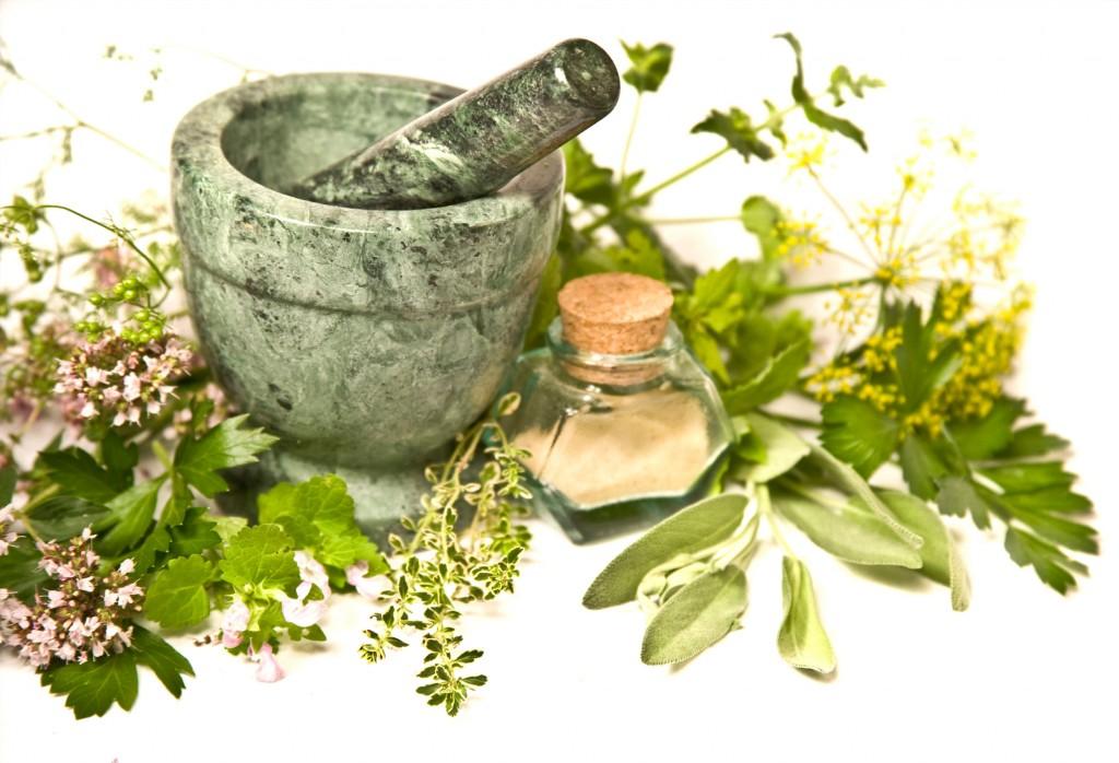 Hasil gambar untuk herbal natural