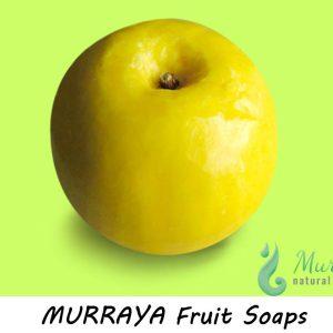 murraya_fruit_soap25