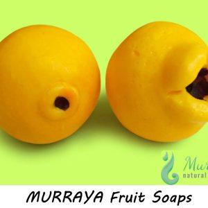 murraya_fruit_soap27